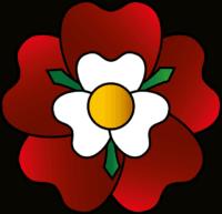 An illustration of the tutor rose