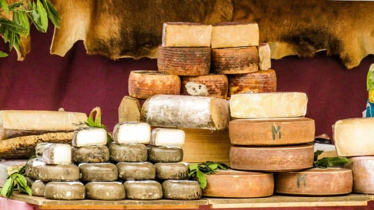 The Exclusive Guide to Manchego Cheese Wine Pairing